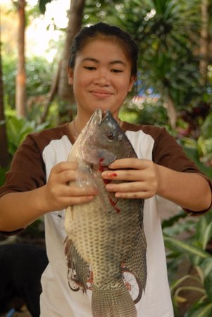 Chai Badan, Tailandia: Frischer geht es nicht mehr