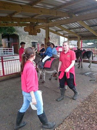Bolton, UK: Smithills Open Farm