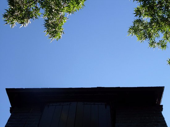 a tree, a wooden window and the blue, blue sky in Tredos