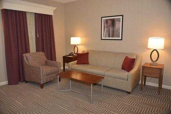 Frontenac, MO: Junior Suite Sofa