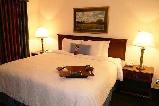 Hampton Inn & Suites Denver Tech Center: Guest Room