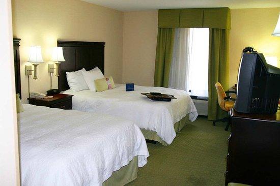 勒努瓦城希爾頓恆庭酒店照片