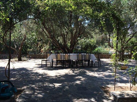 Paradeisos Taverna : photo1.jpg