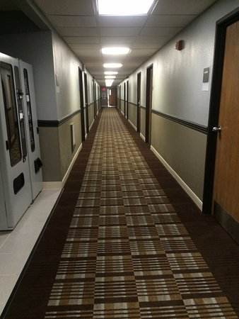 Mount Gilead, OH: Hallway