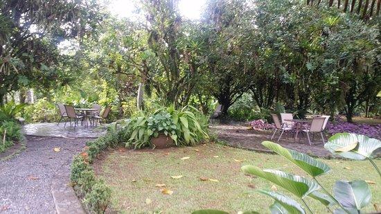 Sarapiquis Rainforest Lodge: Accanto alla piscina