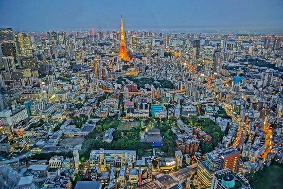 Pick n GO Tokyo
