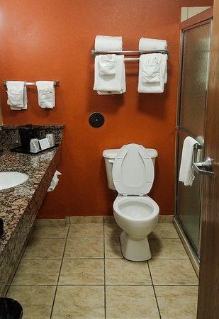 Sleep Inn And Suites: Optional Bathroom