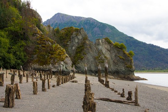 Kachemak Bay State Park: Pickup point for return to Homer