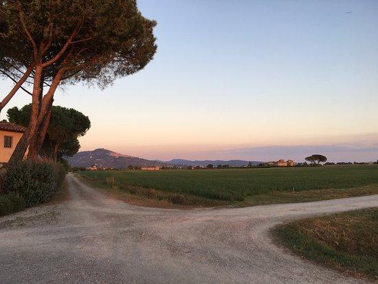 Cortona Resort - Le Terre dei Cavalieri : photo4.jpg