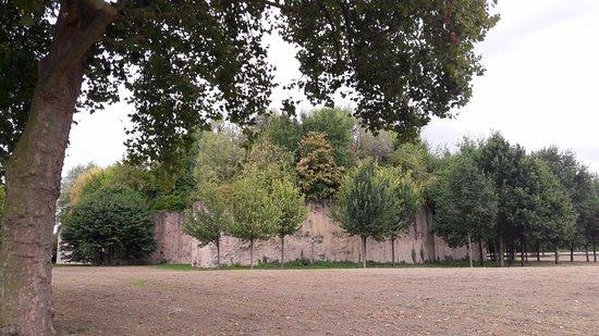Parc Henri Matisse : la butte arborée, lieu emblématique du parc