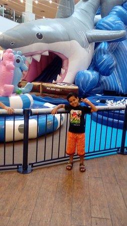 Duque de Caxias, RJ: Meu filhote se divertindo