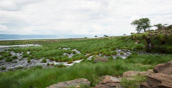 World View Campsite: Bewertungen & Fotos (Lake Natron ...