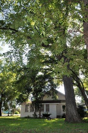 Llano, TX: Back Yard