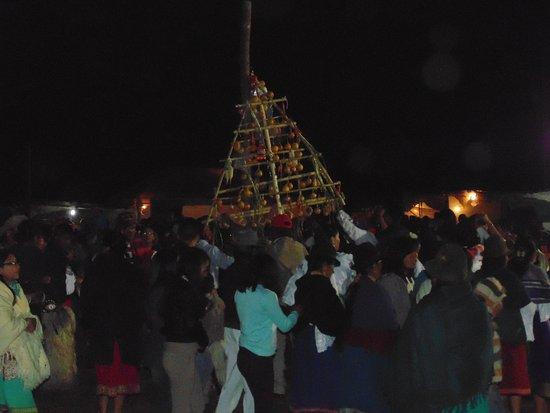 Imbabura Province, Ecuador: FIESTA RAMA DE GALLOS POR EL INTY RAYMI DESDE PIJAL-OTAVALO-ECUADOR