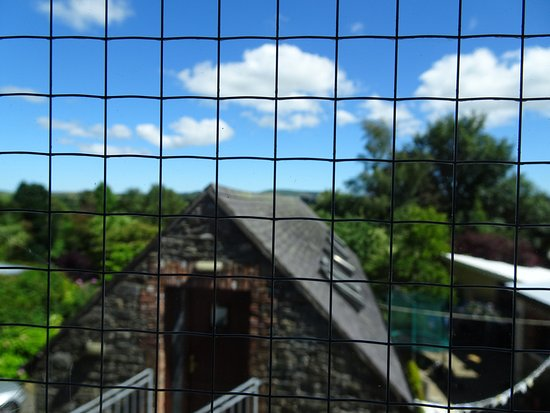 Stirabout Lane B&B: The picture focusses on the window itself, in reality you have a nice clear view.