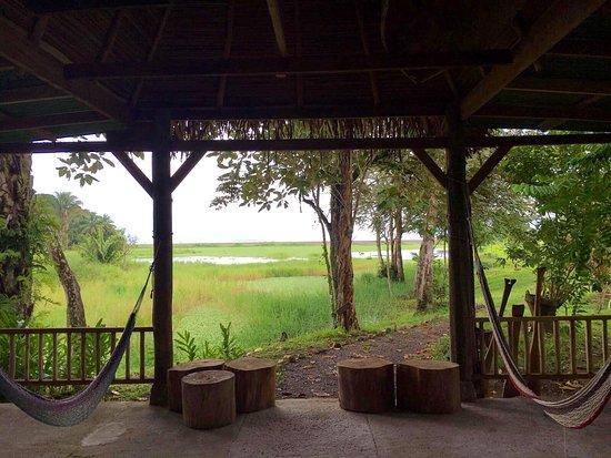 Rio Drake Farm: photo2.jpg