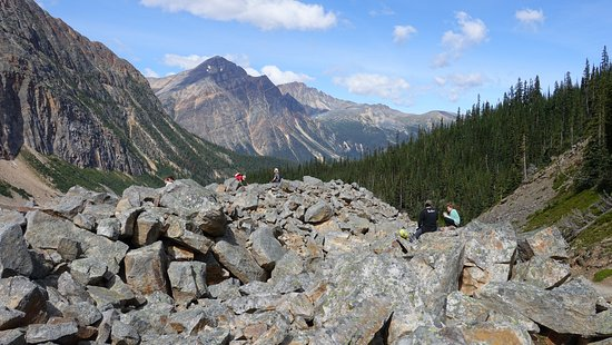 Mt. Edith Cavell: Lookout point at Cavell/Angel glacier