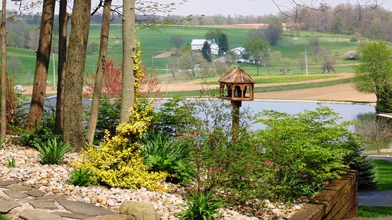 Dundee, OH: Cabin Flowerbed overlooking the Lake