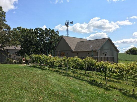 Salem Glen Vineyard and Winery