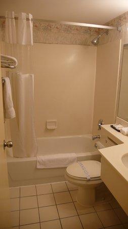 Flushing Central Hotel: Baño
