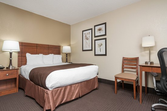 AmericInn Lodge & Suites Lake City: Queen Mini Suite
