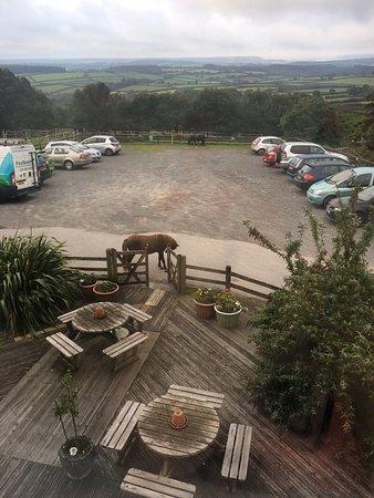 Wotter, UK: photo3.jpg