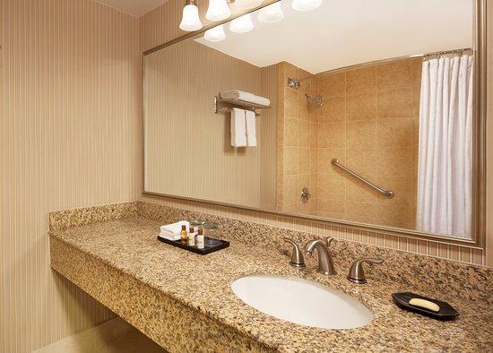 Sheraton Inner Harbor Hotel: Bathroom