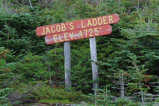 The Mount Washington Cog Railway : Jacob's Ladder