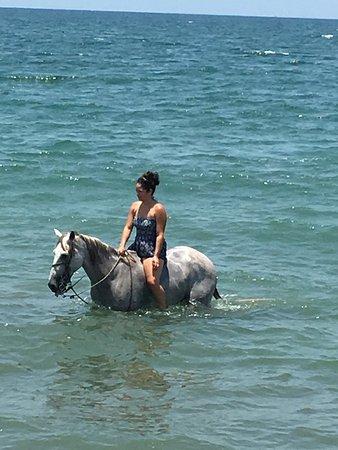 Lindo Mar Resort: photo0.jpg