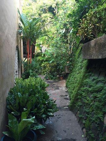 Villa Mango: photo8.jpg