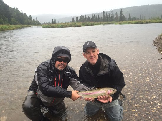 Iliamna, AK: Lots of nice rainbow trout on light fly rods made for a great day fishing!