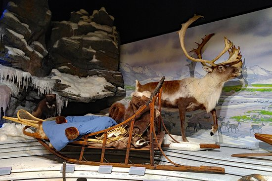 Kotzebue, Alaska: Exhibts in Northwest Arctic Heritage Center