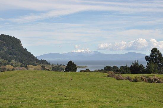 Whakaipo Lodge: Stroll to Lake Taupo's Whakaipo Bay from the Lodge