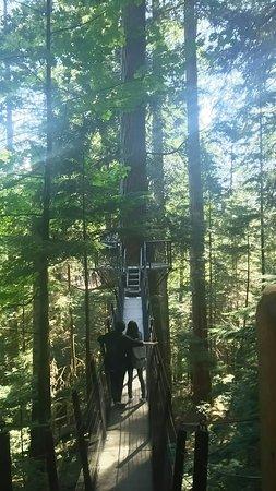 North Vancouver, Kanada: DSC_2752_large.jpg