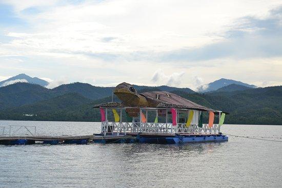 Honda Bay: at Pambato Reef