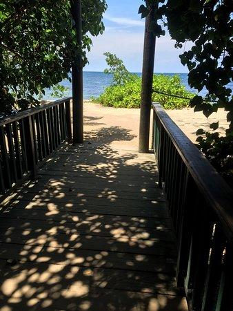Ocho Rios, Jamaïque : photo6.jpg