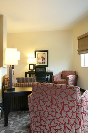 Holiday Inn Omaha Downtown Airport : Luxury King Non-Smoking View Suite