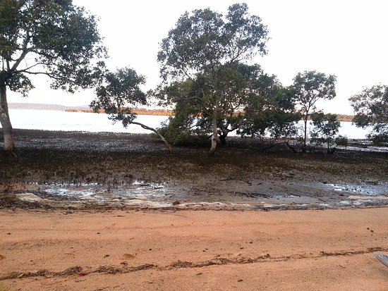 Macleay Island, Australië: beach frontage