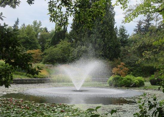 Fountain, VanDusen Botanical Garden, Vancouver, BC