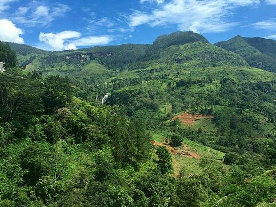 Bentota, Sri Lanka: Panchi Tours - Chamin