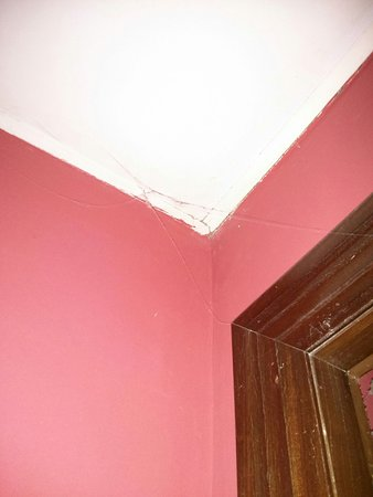 Hotel Leonor Miron: Telarañas en el techo de la habitación
