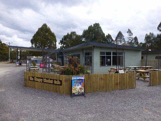 Derwent Bridge, Avustralya: The Hungry Wombat Cafe