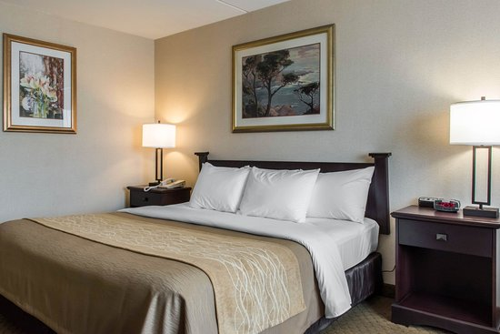 Comfort Inn of Lancaster County North: King room