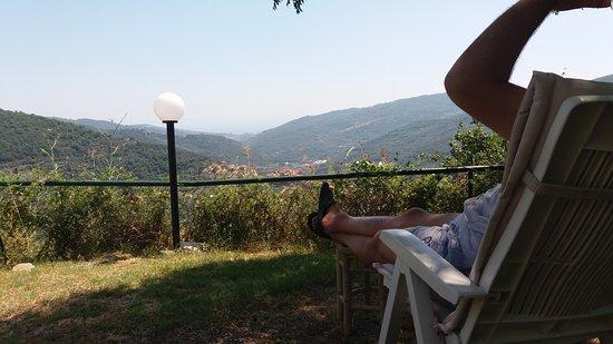 Borgata Castello: Panorama da sotto l'Albero del Pepe