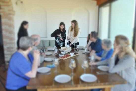 Serdiana, Italia: Wine tasting