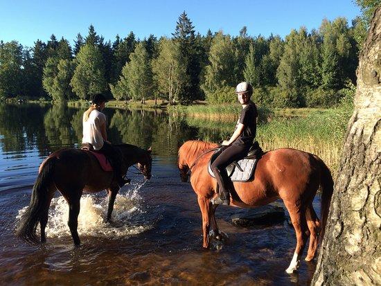 Telc, Tjekkiet: santenie koni