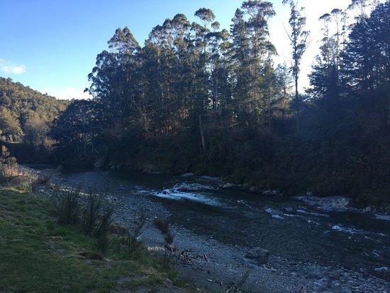 Nelson-Tasman Region, Neuseeland: photo8.jpg