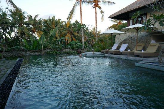 radha phala resort spa picture of radha phala resort spa ubud rh tripadvisor co uk hotel radha phala resort & spa radha phala resort & spa ubud
