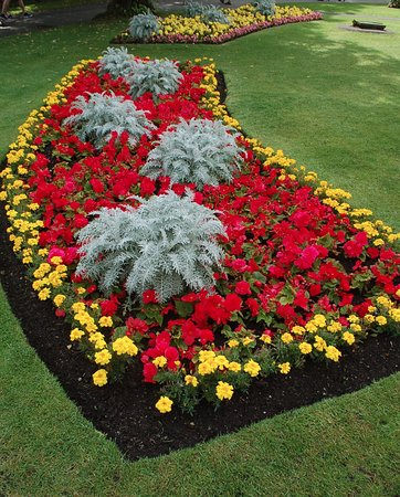 Beautiful flower beds picture of valley gardens for Beautiful flower beds