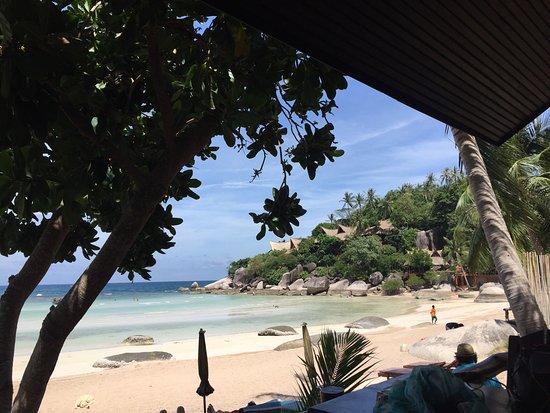 Palm Leaf Resort: photo0.jpg
